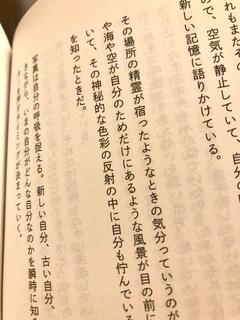 IMG_2683 2.jpg